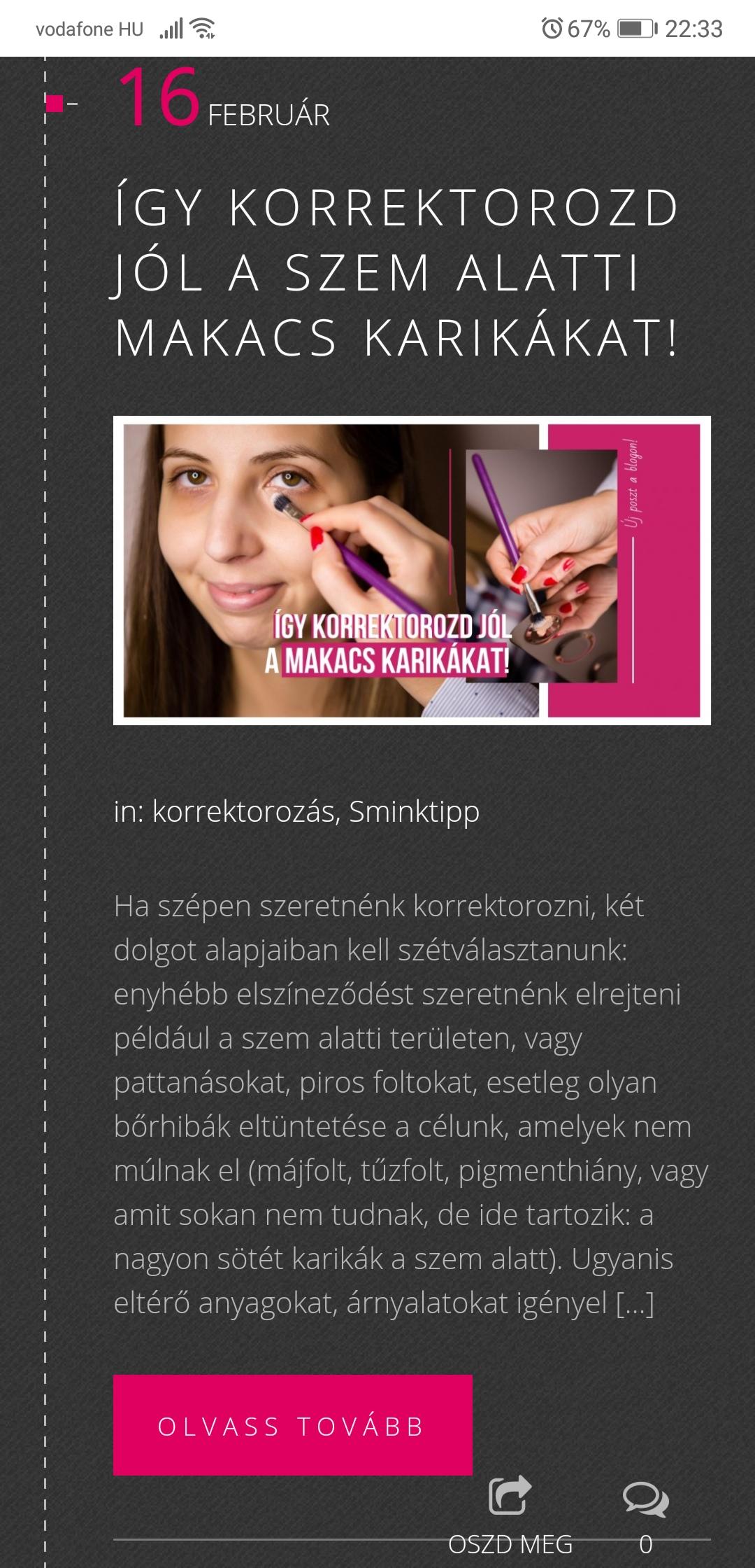 ceges blogiras (7)